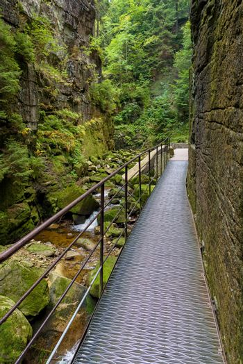 Metal footbridge in the gorge of Kamienczyk river in polish Giant Mountains