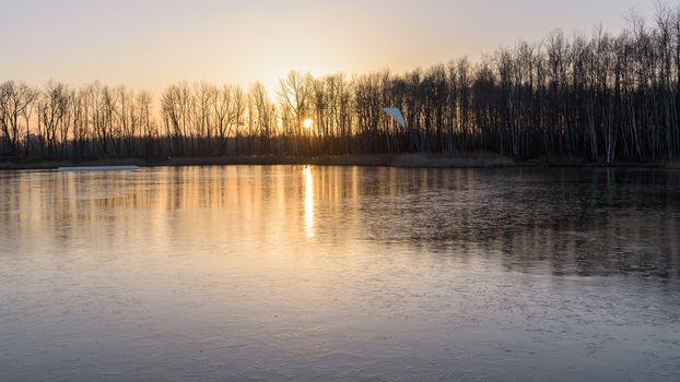 Frozen Stawiki lake at sunset in Sosnowiec, Poland