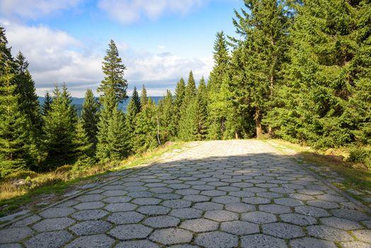 Forest red trail to the mountain shelter on Szrenicka Hall in Giant Mountains near Szklarska Poreba, Poland