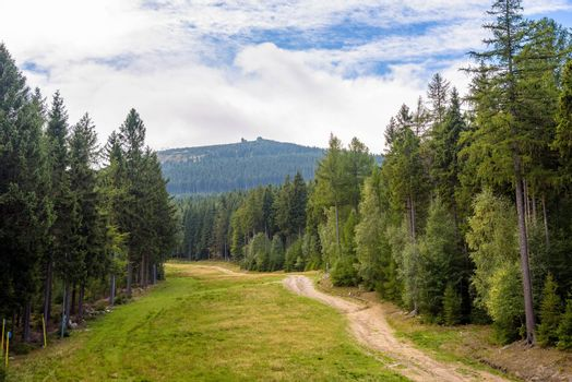 Summer view of forest path on slope of Szrenica Mountain in Giant Mountains in Poland