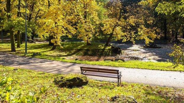 Bench in a park at colorful sunny autumn