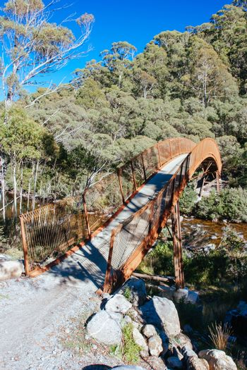 The popular Thredo Valley Track which is a walk and bike track that runs from Thredbo to Jindabyne thru Lake Crackenback in New South Wales, Australia