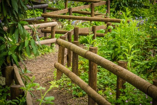 Wooden pathway in a rural countryside, Kent, England