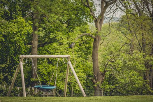 Large swing in an outdoor playground near forest