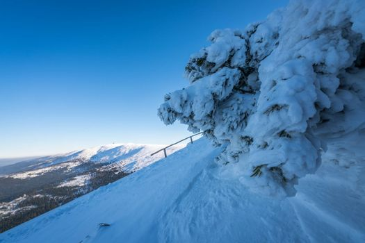 Winter landscape of a Karkonosze mountains as seen from the Szrenica mountain, Poland