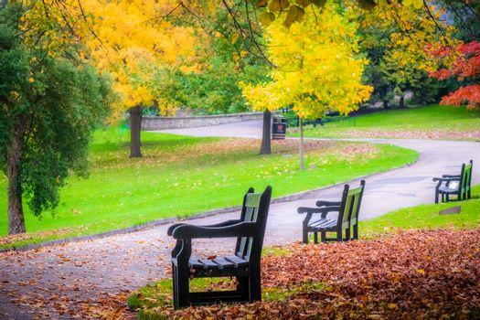 Three empty benches in a park in autumn