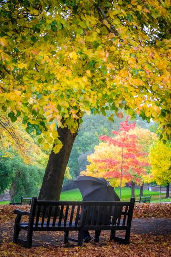 Man sitting alone on the bench on a cloudy, rainy autumn day