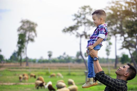 Father, let the children stand on the flow, lift their hands in the sky. See the sheep on their farm and point their hands toward the sheep happily.