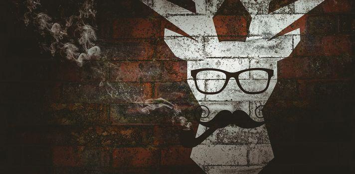 Composite image of moustache face
