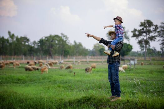 Father and son stood and watched the sheep on their farm and pointed their hands toward the sheep happily.