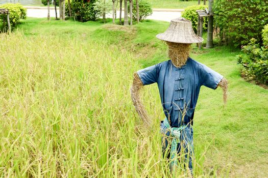 Humanoid scarecrows are usually dressed in old clothes and place