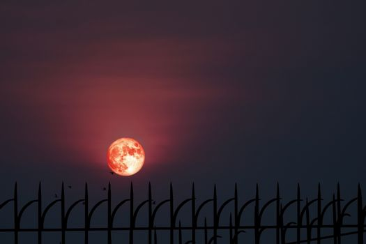 Full hay moon halo back silhouette iron metal fence