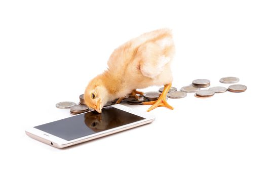 Chick communicate with smartphones for money