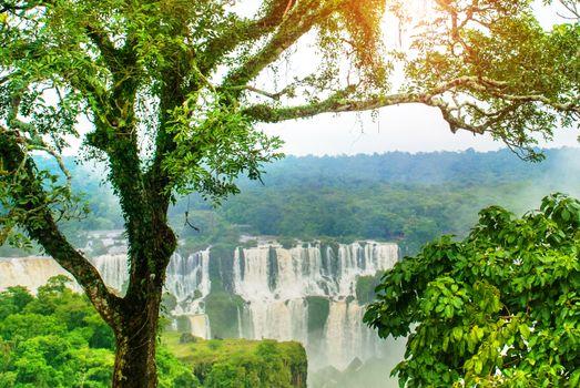 Iguassu Falls, Brazil, America: Extraordinary view from the Brazilian waterfalls. Seventh wonder of the world. UNESCO world heritage.