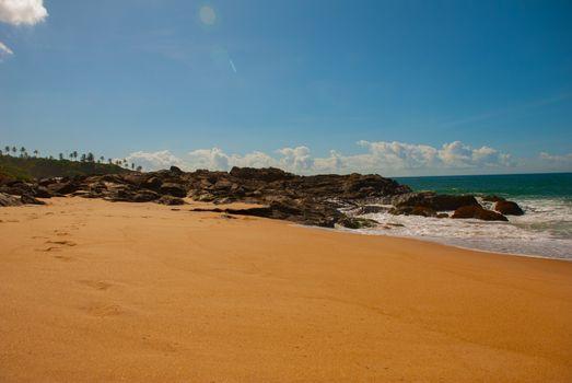 SALVADOR, BAHIA, BRAZIL: Brazilian beach with yellow sand and blue sea in Sunny weather. Sao Salvador da Bahia de Todos os Santos. South America.