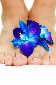 female legs with blue  flower