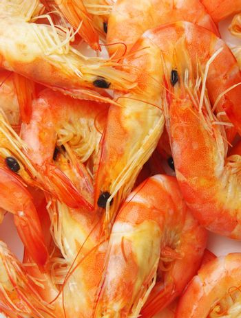 prawns closeup as a background