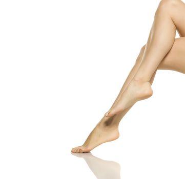 beautifully groomed female legs