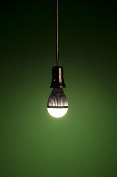 LED bulb on green