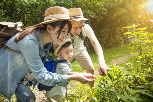parent teaching son about nature and plant