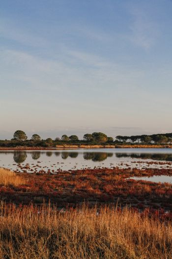 Lagoon surrounded by reddish vegetation that is reflected in the