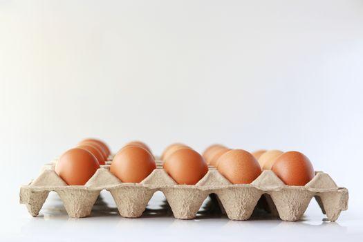 Eggs on paper egg panel on white background.