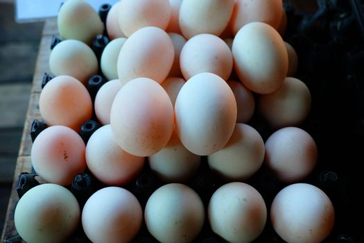 Fresh Duck Eggs in Plastic Egg Panel.