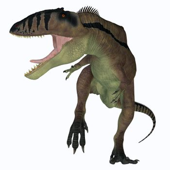 Carcharodontosaurus was a predatory theropod dinosaur that lived in the Sahara, Africa during the Cretaceous Period.