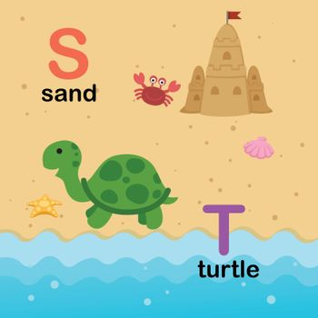 Alphabet Letter S-sand,T-turtle,vector illustration