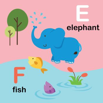 Alphabet Letter F-fish,E-elephant,vector illustration