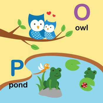 Alphabet Letter O-owl,P-pond,vector illustration
