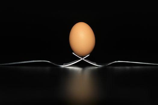 Organic fresh egg standing on two joined fork on black background