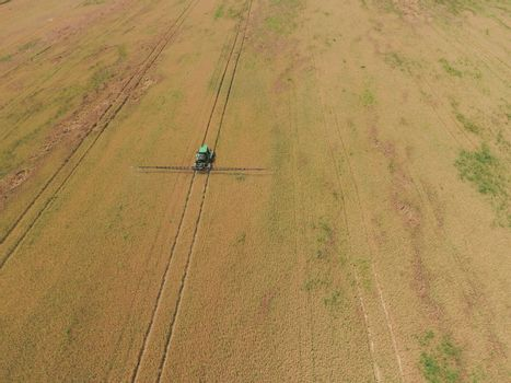 Adding herbicide tractor on the field of ripe wheat. Growing crops in the fields. View from above.