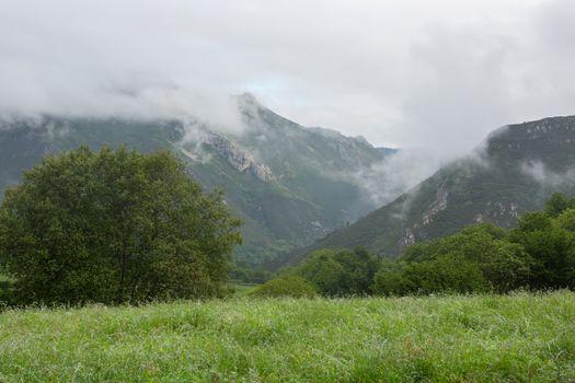 Picos de Europa