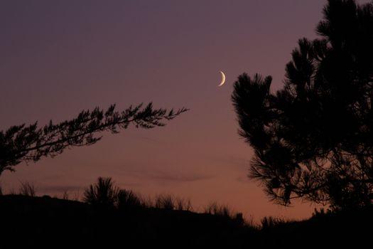 Moonlight at Dusk