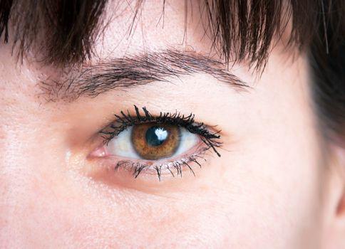 Closeup of the female eyes