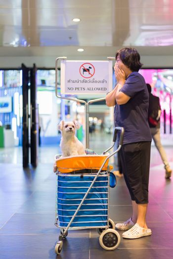 Asian woman feeling shocked when her and her pet (The dog) on shopping cart found warning sign No Pets Allowed at entrance door for exhibit hall or expo