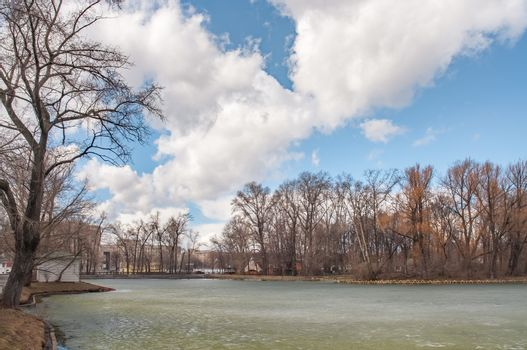A view of trees around the lake in the Gorky Park of Moscow