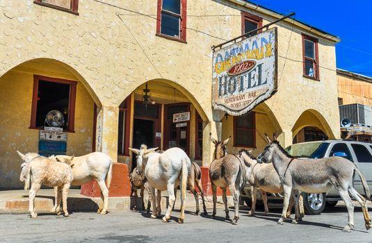 Historic Hotel on Route 66 in Oatman, Arizona