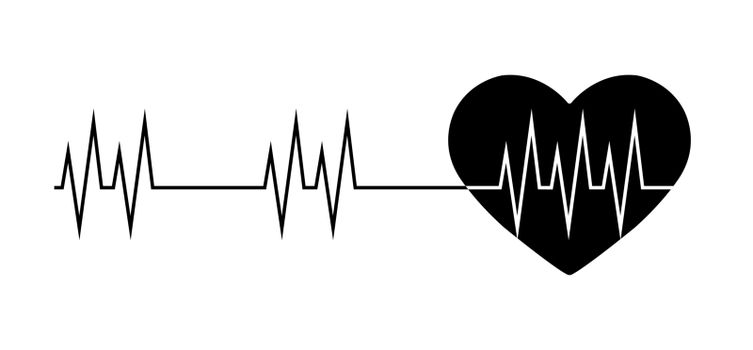 heart and the line of the cardiogram, a simple drawing for the design