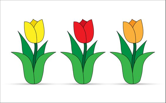Set of tulips with different flower color, flat design