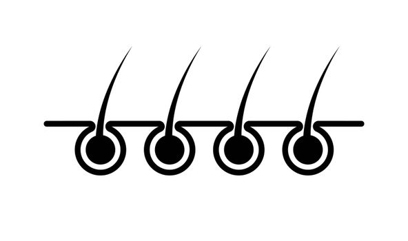 hair icon on the skin, simple design