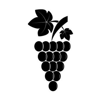 Bunch of grapes on a branch with leaves, a simple image