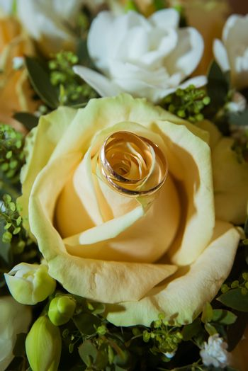 Two beautiful gold engagement rings of the bride and groom on a big yellow rose bouquet.