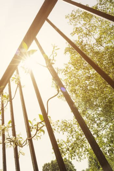Sunshine beyond railing bars with light flare.