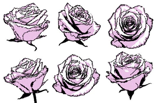 black and pink halftone points roses set