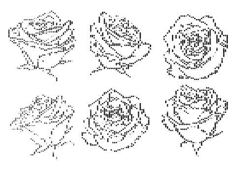 black and white halftone decorative roses illustrations