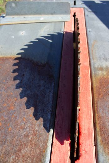 Round saw with teeth in the machine and its shadow.