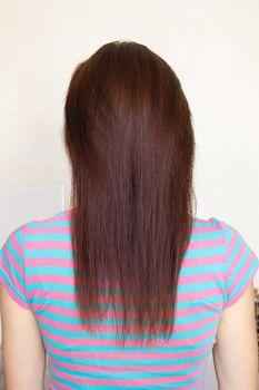 Woman's long straight chestnut hair.