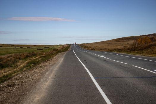 Natural asphalt road, horizontal photo.